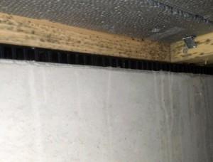 土台のカビ。床下の湿気が原因で大量のカビが土台に発生。