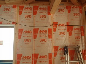 IMGP3289